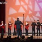Območna revija odraslih pevskih zborov Maribor 2012, 3. koncert